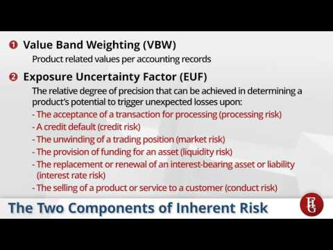 FIG - BCBS 239 - Risk Accounting - 2016