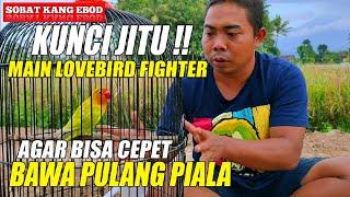 Download lagu Kunci Jitu Main LB Fighter Agar Bisa Cepat Bawa Pulang Piala.