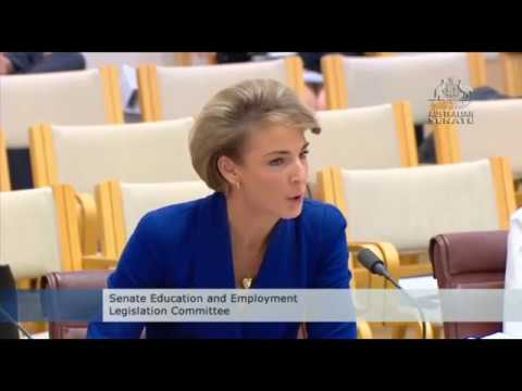 Michaelia Cash admits her staffer tipped off the media ahead of AFP raid on AWU