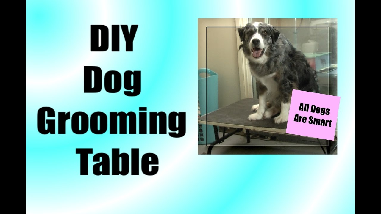 Diy grooming table youtube diy grooming table solutioingenieria Image collections