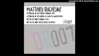 Matthieu Duchesne - Deep In The Night (Robot Needs Oil Remix)