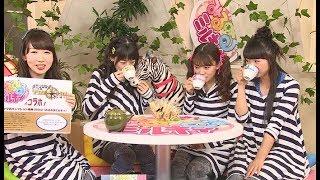 Animelo Summer Live 2017 -THE CARD- オフィシャルパンフレット特典映...