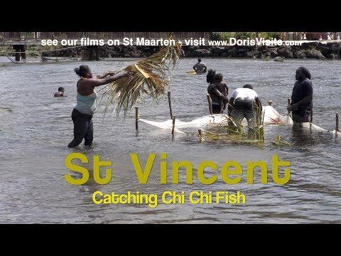 St Vincent, Grenadine Islands. ChiChi Fishing