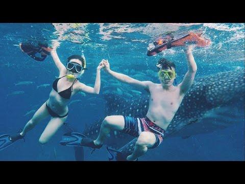 2016 菲律賓 宿霧 歐斯陸鯨鯊 Philippines CEBU Oslob Whale sharks Watching with Gopro Hero4