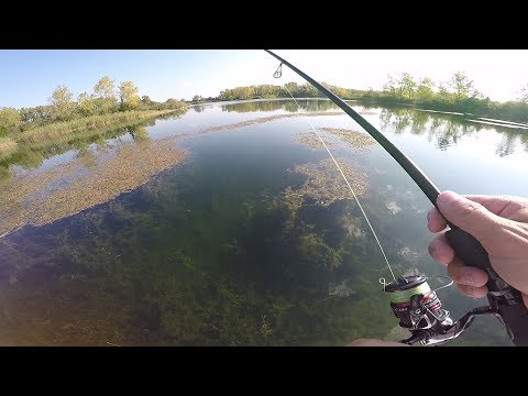 Clear Water Bass Fishing Ft. Jon B