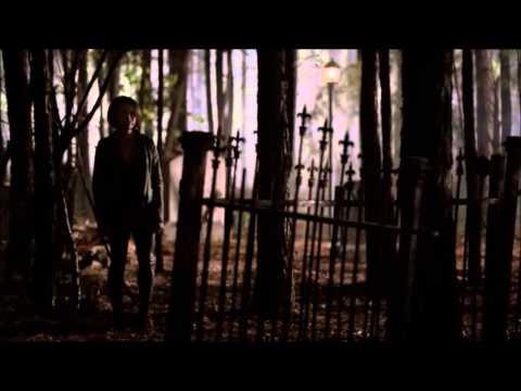 DAMON'S DEATH TVD last scene 5x22 Wings-Birdy