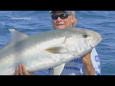 Deep Sea Fishing For Grouper and Monster Amberjack in Key West Florida