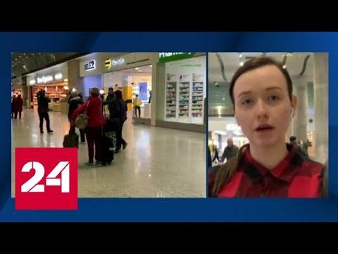 В Пулково приземлился борт с пассажирами Westerdam - Россия 24