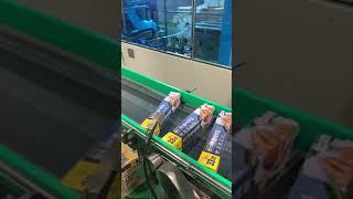 호일와인더+카토너+제함기 (호일 자동포장기계)