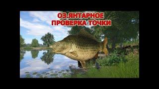 Русская рыбалка 4 Russian fishing 4 Янтарное Карп Вторая точка для фарма