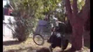 F.U.K bike tied to tree