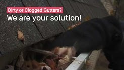 Gutter Cleaning Services Sacramento