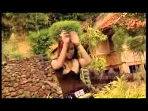 KIANSIN - TUKANG BOHONG