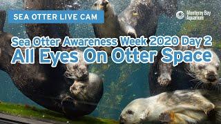 Sea Otter Awareness Week 2020 …