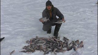 ПОЖАРИЛИ ТАПОЧКИ ПОПАЛИ НА ЖОР рыбалка с ночёвкой лещ плотва окунь