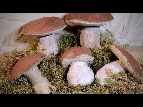 Муляжи грибов своими руками