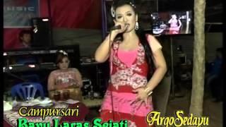 Dangdut Koplo Doremi Dadu Karo Remi, BLS Music