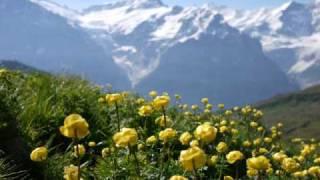 My travel to Germany,Austria and Switzerland Alps