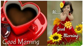 Good morning Wishes/Best Good morning Images,whatsapp,instagram dp photos/Best Good morning Pictures screenshot 2