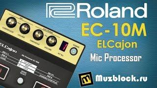 Обзор Roland EC-10M ELCajon Mic Processor