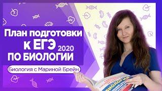 План подготовки к ЕГЭ по биологии 2020 с нуля