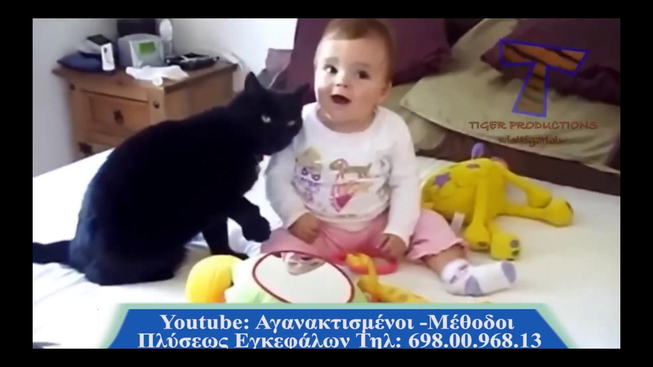 Анимации пушкин, котики смешное видео для детей смотреть ютуб
