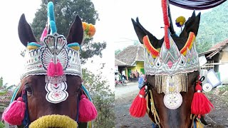 Download Video Kuda renggong pusaka muda  keliling Cibodas Bandung Full video MP3 3GP MP4
