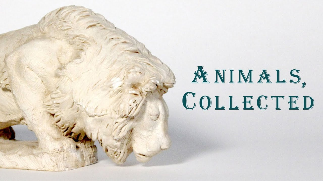 Animals, Collected