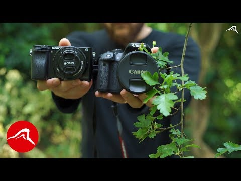 Canon Eos or Sony Alpha - Which Cheap Camera Would I Buy for TRAVEL A6000 vs 700D