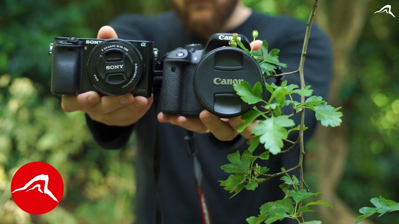 Canon Eos or Sony Alpha – Which Cheap Camera Would I Buy for TRAVEL A6000 vs 700D