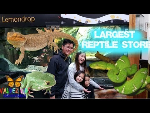 Largest and Oldest Reptile retail Store. Berkeley California.😃😄😁