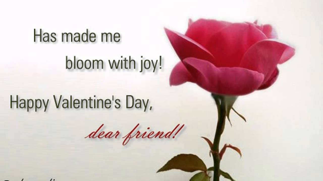 Happy Valentines Day General Friends Wishes Messages Video