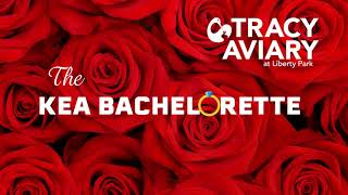 Kea Bachelorette: Season 1 Announcement