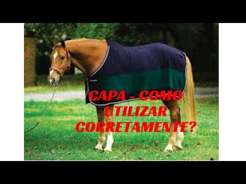 Capas Para Cavalos