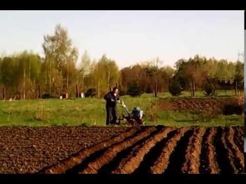 Мотоблок Нева быстрая посадка картошки