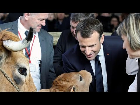 شاهد: نشطاء يستقبلون ماكرون بصيحات الاستهجان أثناء زيارته لمعرض زراعي جنوب باريس…  - نشر قبل 3 ساعة
