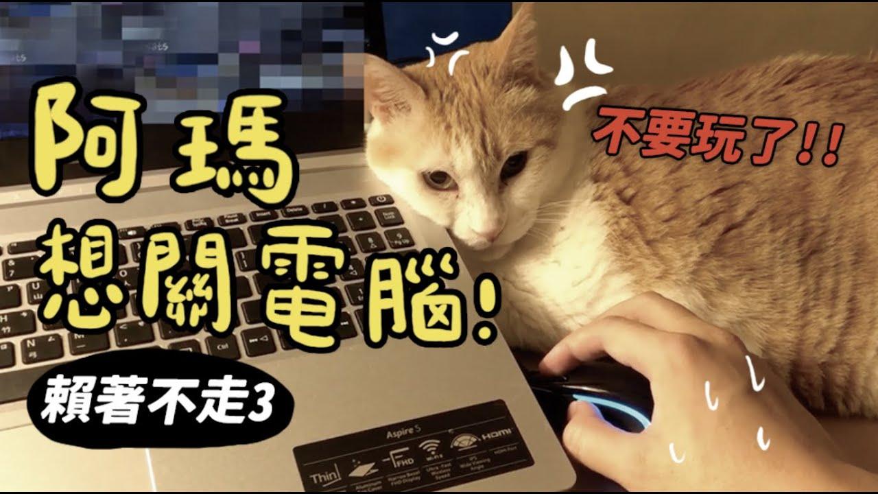 【黃阿瑪的後宮生活】阿瑪想關電腦!賴著不走3