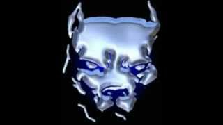 SNOOP DOGG & NATE DOGG & LADY MAY & CAM'RON & SOOPAFLY ~ Don't Fight the Feelin'