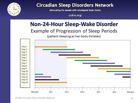 4 What is non 24 hour sleep wake disorder