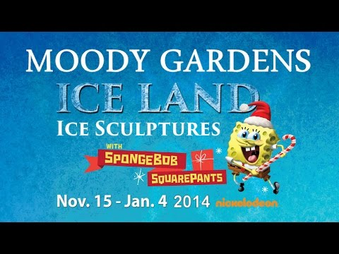 Moody gardens ice land coupons