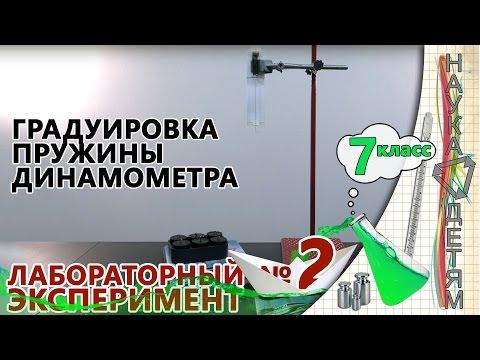 """Лабораторная работа 2 - """"Градуировка пружины динамометра"""" (7 класс)"""