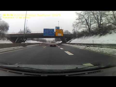 Ljubljana-snow -fallen trees