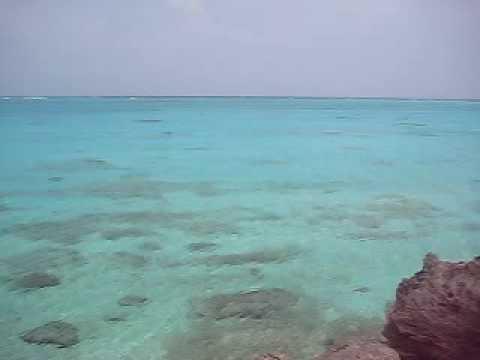 百合ヶ浜や大金久海岸を望む