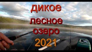 рыбалка 2021 на красивом диком озере