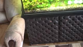 тумба под аквариум с каретной стяжкой (своими руками)Работа мужа