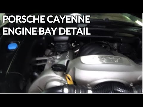 Engine Bay Detailing on A Porsche Cayenne Turbo