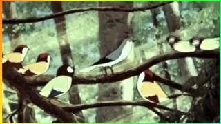 Птичник К Сен Санс