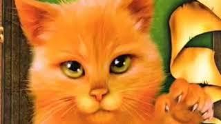 Коты воители прикол стань диким! 1 серия