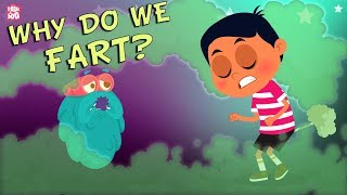 Why Do We Fart? - The Dr. Binocs Show | Best Learning Videos For Kids | Peekaboo Kidz