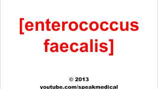 Pronounce Enterococcus Faecalis| SpeakMedical